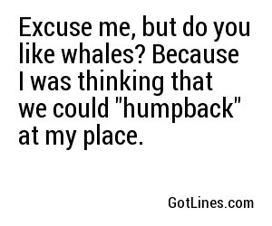 Excuse me, but do you like whales? Because I was thinking that we could