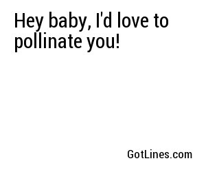 Hey baby, I'd love to pollinate you!