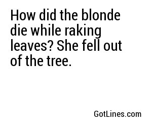 How did the blonde die while raking leaves? She fell out of the tree.