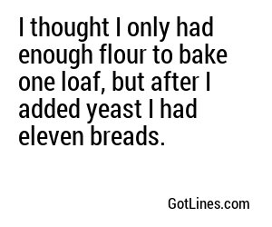 I thought I only had enough flour to bake one loaf, but after I added yeast I had eleven breads.