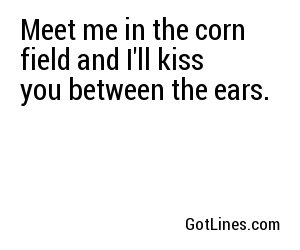 Meet me in the corn field and I'll kiss you between the ears.