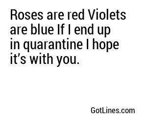Roses are red Violets are blue If I end up in quarantine I hope it's with you.