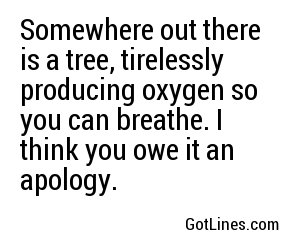 Somewhere out there is a tree, tirelessly producing oxygen so you can breathe. I think you owe it an apology.