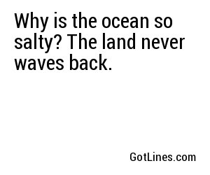 Why is the ocean so salty? The land never waves back.