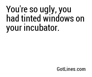 funny ugly insults