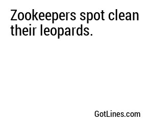 Zookeepers spot clean their leopards.